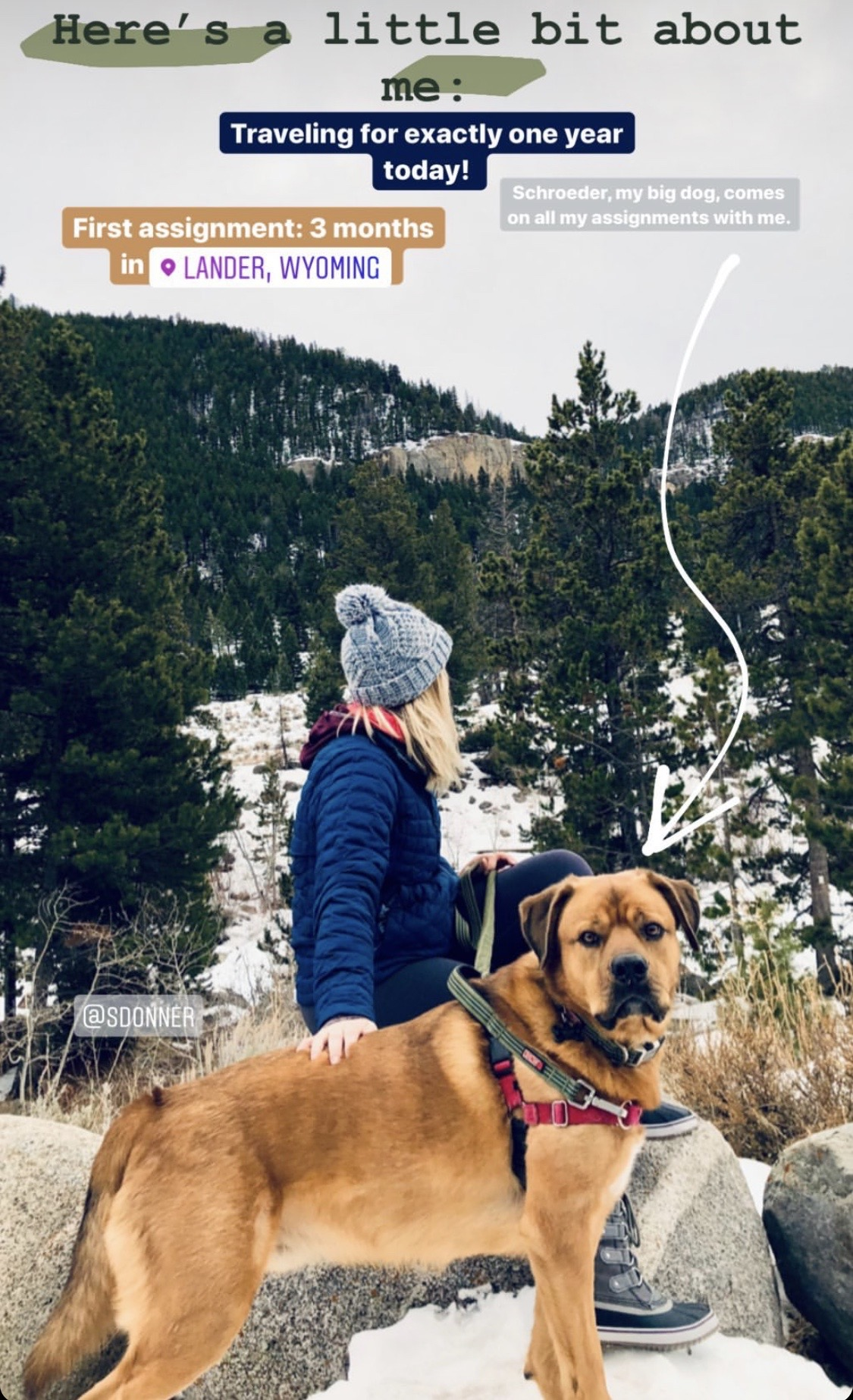 Travel Nurse Shelby Donner and her dog on a snowy mountain top